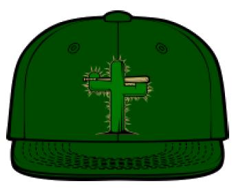 Tucson Saguaros hat