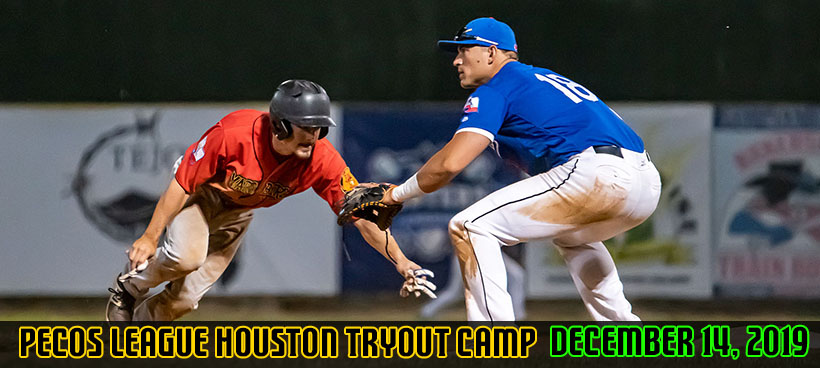 Professional Baseball Tryout Camps
