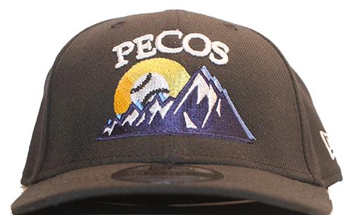 f1644e1c9 Minor League Baseball Hats
